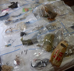 収集したゴミのサンプル