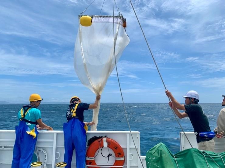 海の表面付近をひくことができる特殊なネット(ニューストンネット)を使用してマイクロプラスチックを集めている様子。